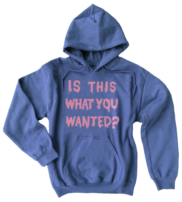 Is ThiS WHaT YoU wANTed? Pullover Hoodie - Heather Blue